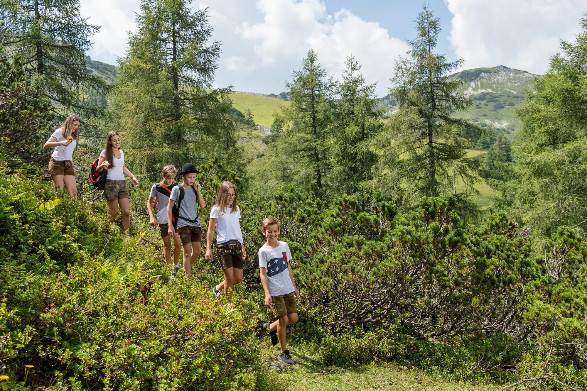 Kinder beim Wandern in Zauchensee