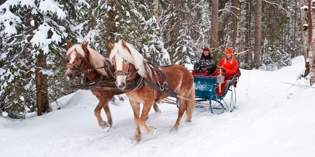 Kutschenfahrt im Schnee in Zauchensee